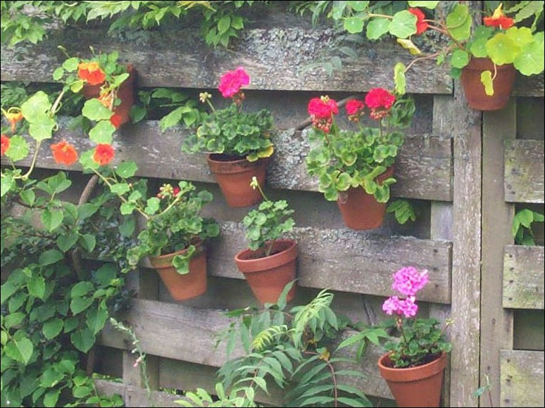 Gardening ideas garden design hanging baskets - Flower pots to hang on fence ...